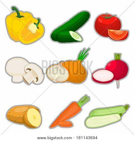 Vector illustration logo vegetables:pepper tomato cucumber carrot potato mushroom cabbage onion zucchini radish eggplant cut sliced.