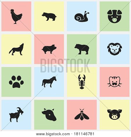 Set Of 16 Editable Zoology Icons. Includes Symbols Such As Wolf, Pig, Crawfish And More. Can Be Used For Web, Mobile, UI And Infographic Design.
