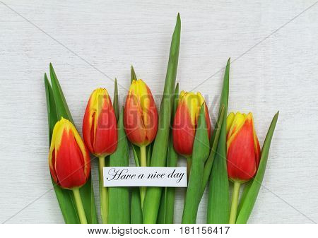 Have a nice day card with red and yellow tulips on white wooden surface