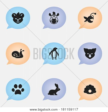 Set Of 9 Editable Zoology Icons. Includes Symbols Such As Escargot, Diver, Rhinoceros And More. Can Be Used For Web, Mobile, UI And Infographic Design.