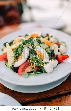 Delicious salad with eggs tomatos cheese and sprouts