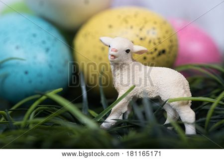 Miniature toy lamb next to speckled decorated Easter Eggs