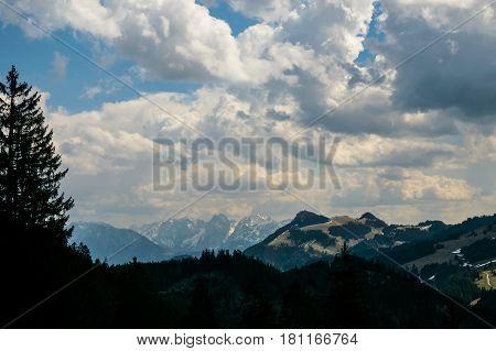 Blick auf die alpen bei bewölktem wetter auf einer Wiese