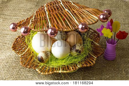 chicken eggs and quail eggs Guinea fowl egg lie together like pearls in a shell on a wooden table covered with burlap