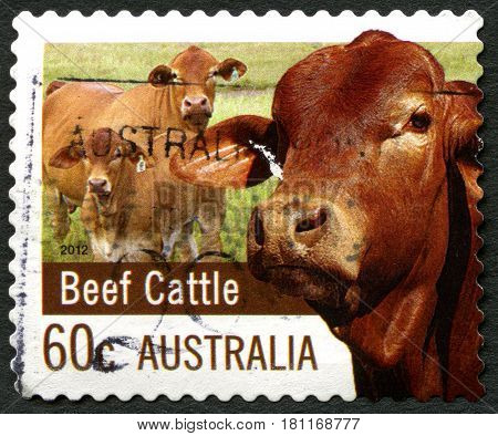 AUSTRALIA - CIRCA 2012: A used postage stamp from Australia celebrating Beef Cattle in the Australian farming industry circa 2012.
