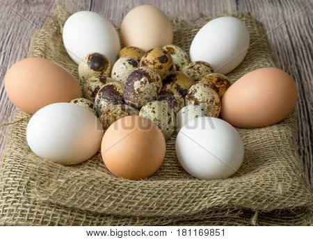 a lot of quail and chicken eggs for painting lying in a pile on a wooden table covered with burlap