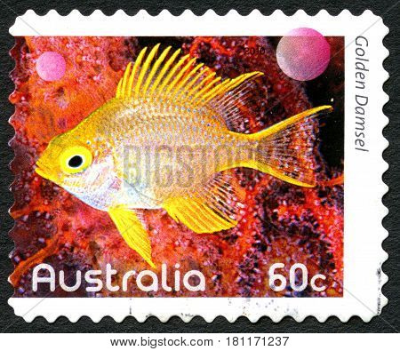 AUSTRALIA - CIRCA 2010: A used postage stamp from Australia depicting an image of a Golden Damsel fish circa 2010.