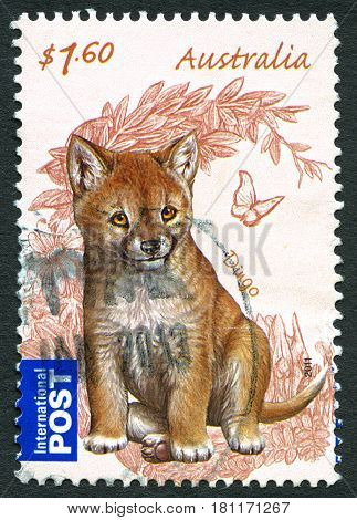 AUSTRALIA - CIRCA 2011: A used postage stamp from Australia depicting an illustration of a Dingo circa 2011.