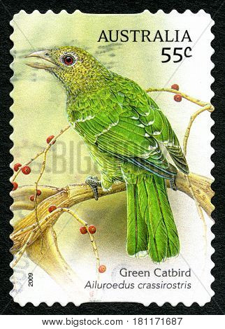 AUSTRALIA - CIRCA 2009: A used postage stamp from Australia depicting an illustration of a Green Catbird circa 2009.
