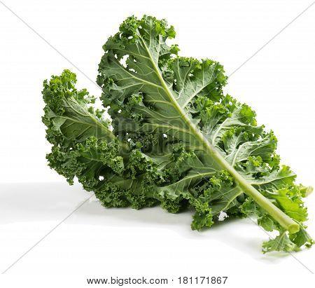 Juicy fresh kale leaves isolated on white background.