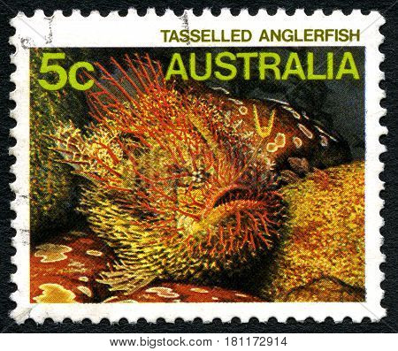 AUSTRALIA - CIRCA 1985: A used postage stamp from Australia depicting an image of a Tasselled Anglerfish circa 1985.