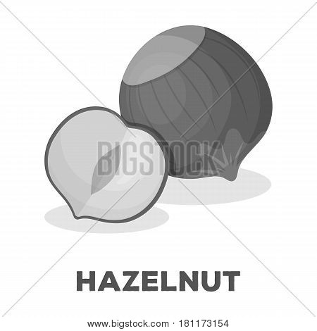 Hazelnuts in shell.Different kinds of nuts single icon in monochrome style vector symbol stock web illustration.