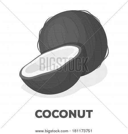 Coconat.Different kinds of nuts single icon in monochrome style vector symbol stock web illustration.