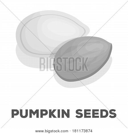 Pumpkin seeds.Different kinds of nuts single icon in monochrome style vector symbol stock web illustration.