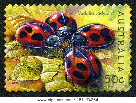 AUSTRALIA - CIRCA 2003: A used postage stamp from Australia depicting an illustration of a Vedalia Ladybird circa 2003.