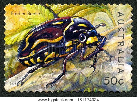 AUSTRALIA - CIRCA 2003: A used postage stamp from Australia depicting an illustration of a Fiddler Beetle circa 2003.