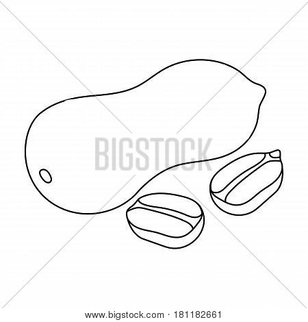Peanut in the shell.Different kinds of nuts single icon in outline style vector symbol stock web illustration.