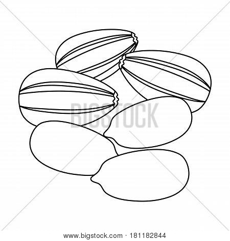 Sunflower seeds.Different kinds of nuts single icon in outline style vector symbol stock web illustration.