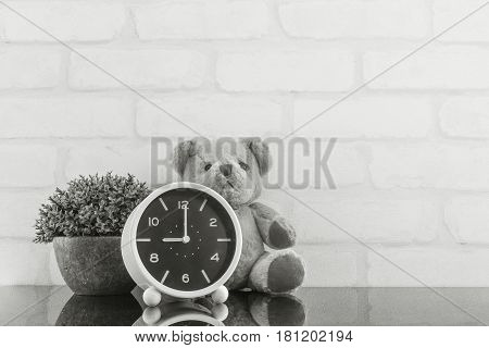 Closeup alarm clock for decorate in 9 o'clock with bear doll and plant on black glass table and white brick wall textured background in black and white tone with copy space