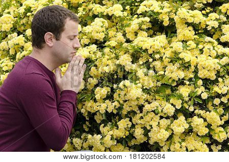 Side profile of man praying by yellow flowers with his hands together under his chin.