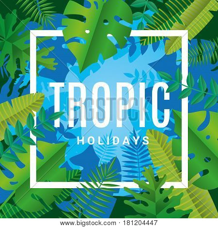 Tropical summer paper background. Summer time tropic holiday illustration banner, header, sale, flyer. Poster party, sticker, billboard, web site. Abstract green backdrop text, type, font script quote