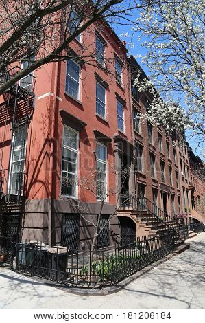 New York City brownstones at historic Brooklyn Heights neighborhood