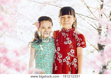 Portrait of two adorable little asian sisters with abstract blured cherry blossoms or sakura flower tree background . Springtime.