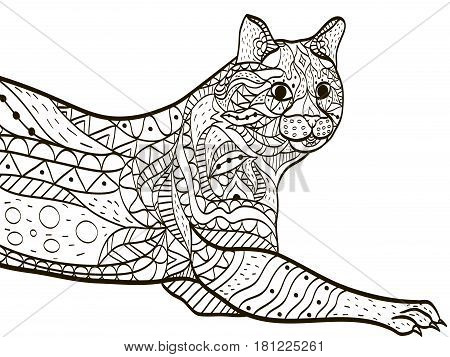 Cat animal coloring book for adults vector illustration. Anti-stress coloring for adult. Zentangle style. Black and white lines. Lace pattern