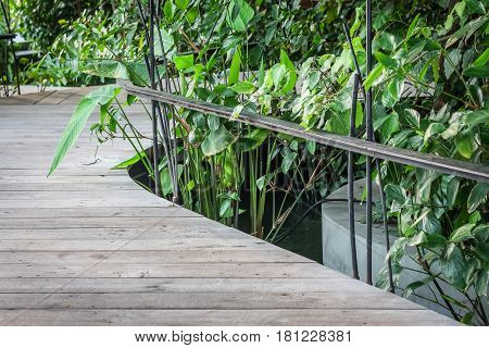 Bridge walkway with handrail surround with green plant