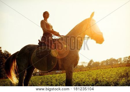 Young woman horseriding in sunset on the fields.