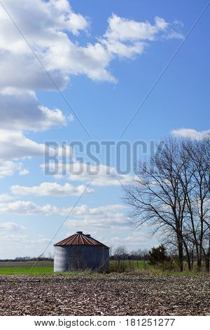 Single grain bin, vertical in rural setting with tree, crop fields, blue skies and fluffy white clouds