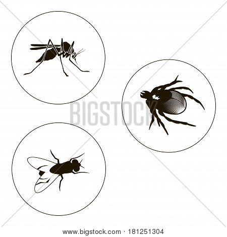 insects set including bug, fly and mosquito. Bugs icons. Vector illustration