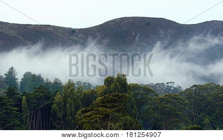 The Marin Headlands in the Fog San Francisco USA