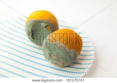 Two rotten oranges covered with blue mold. Beautiful spoiled food: citrus fruit on a plate. Shallow focus