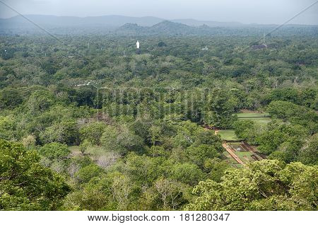 A tall white statue of Buddha is located in the middle of the jungle forest. The path leads from the mountaintop citadel on top of Lion Rock through the ancient city at the base of Lion Rock near Sigiriya in Sri Lanka.