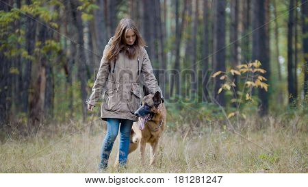 Blonde hair female playing with her pet - german shepherd - walking on a autumn forest , telephoto poster