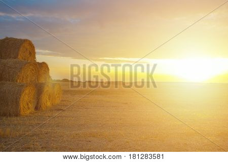 Hay-roll on a meadow against sunset background