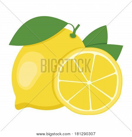 Lemon. One whole lemon fruit and a half. Vector illustration.