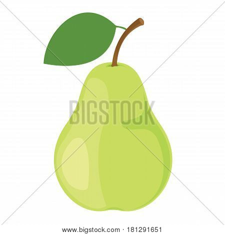 Pear. One green pear fruit. Vector illustration.