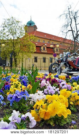 Closeup view on flowerbed on central square of Czech spa city Podebrady, which is castle. Bike on background. Motor season opening