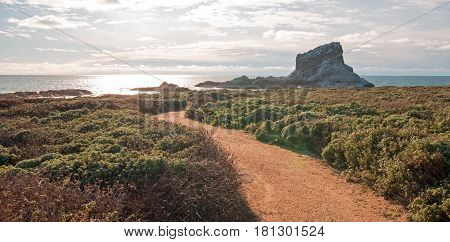 Walking path to Piedras Blancas Point on the Central Coast of California USA