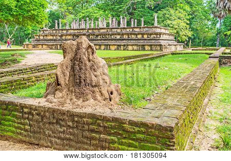 The Anthill In Polonnaruwa Archaeological Site