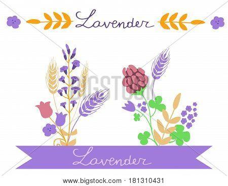 Vector floral simple motive set with handwritten Lavander word