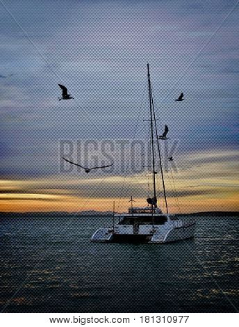 seascape with Catamaran and seagulls in morning light