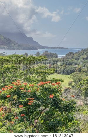 Clouds over Hanalei: Hanalei Bay on a cloudy day, with a lush landscape in the foreground, on Kauai