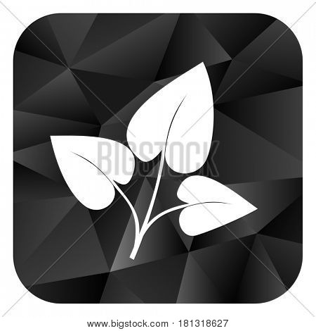 Leaf black color web modern brillant design square internet icon on white background.