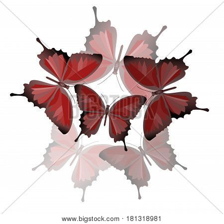 Round composition of red butterflies with semitransparent reflection beautiful spring decoration