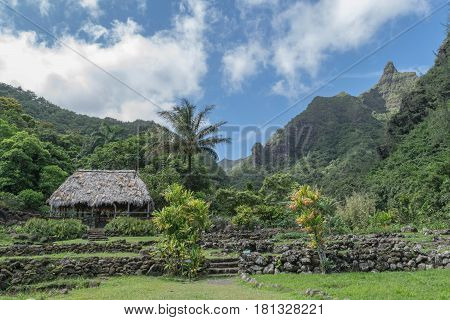 Grass Roof: a grass roof hut, palm tree, mountains and lush garden, at the Limahuli Garden and Preserve-National Botanical Garden, Ha'ena, Halele'a, Kauai, Hawaii, on March 24, 2017, mid-morning