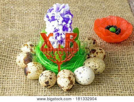 poppy flower and the flower hyacinth is lying on the filler sisal green light green color surrounded by quail eggs on a wooden table covered with burlap