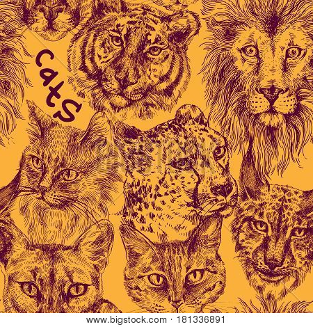Seamless pattern with different cats. Lion, tiger, cat, lynx, cheetah, leopard, panther Drawing by hand Sketch style
